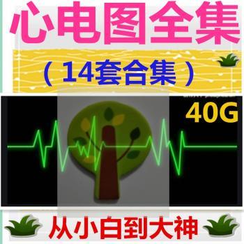 心电图视频教程14套合集39G 心电图教学临床心电图培训心电图形成