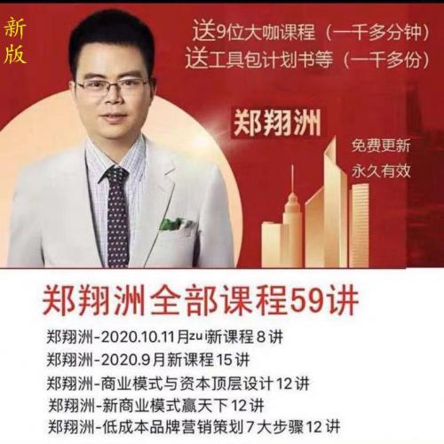 2020新郑翔洲视频课程全集59集商业模式教程199课程/工具包PPT